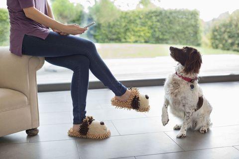 Woman talking to pet dog