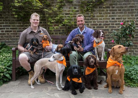 Ben Fogle and vet Luke Gamble Act Against Lungworm