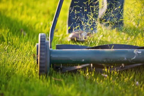 Mowing lawn - close up of woman's feet on garden