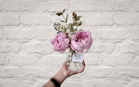 Little Bud pink flowers in glass