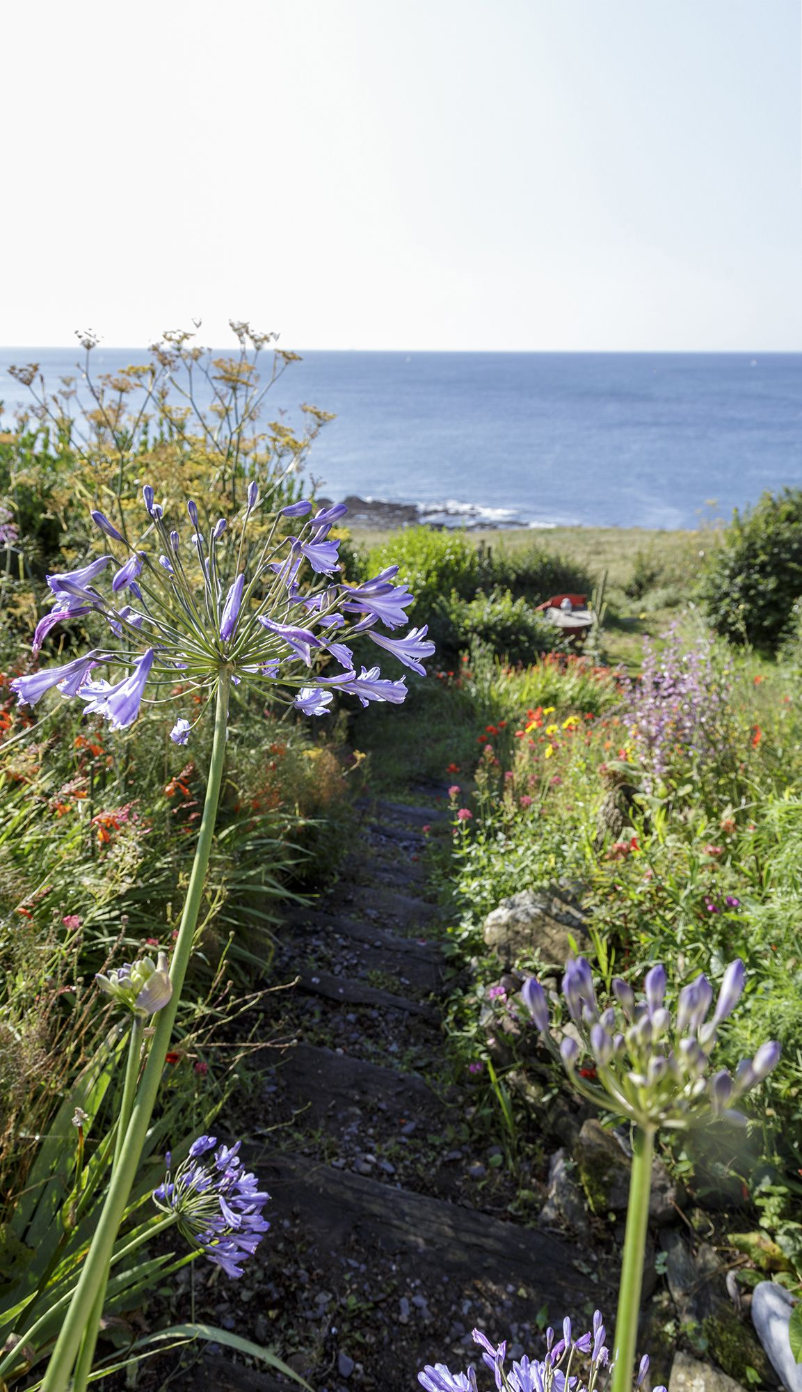 This Devonshire garden is the perfect example of how to get colourful summer blooms right