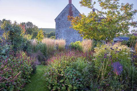 wild flower garden house