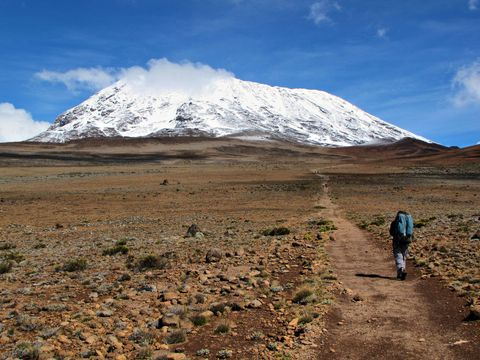 Mount Kilimanjaro climber - Africa - mountain