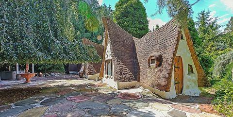 Property, Tree, Architecture, House, Building, Rock, Adaptation, Real estate, Landscape, Plant,