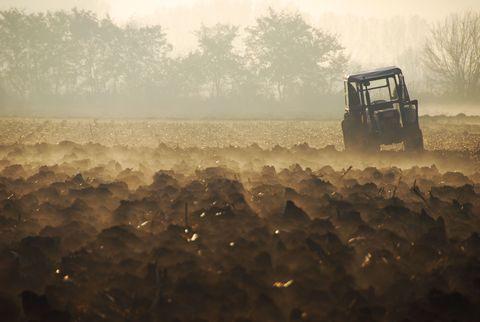 plough tractor