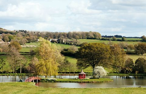 Prue Leith's garden