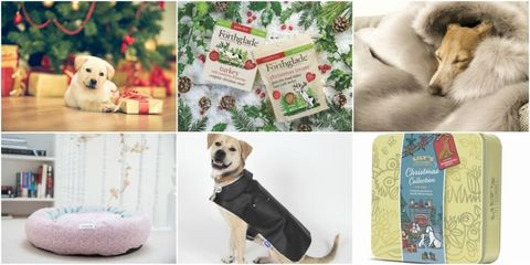 dog christmas presents collage - Christmas Presents For Dogs