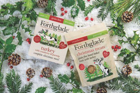 Turkey Christmas Dinner for dogs - Forthglade