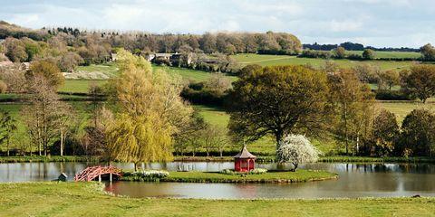 Prue Leith lake garden
