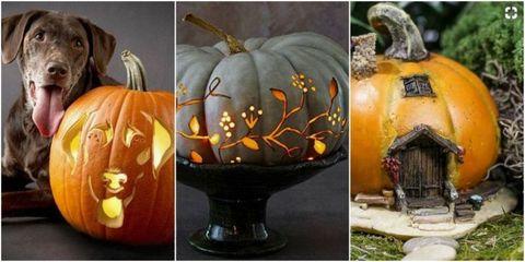 pumpkin carving ideas - halloween pumpkin designs
