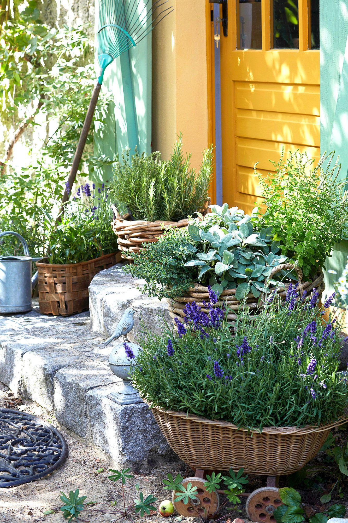 Garden Steps Door