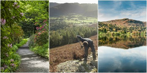 National Trust working holidays