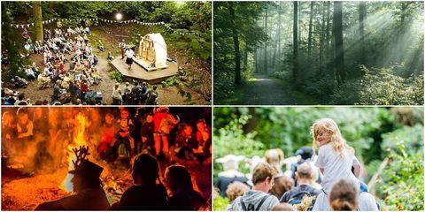 Timber Festival - forest festival