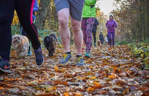 "<p>If you don't already run, then make 2018 the year you start. And what better way than by signing up for one of the ever-increasing number of&nbsp;<a href=""http://www.parkrun.org.uk/"">parkrun</a>&nbsp;events? There are currently 682 parkruns each weekend across the country with around 130,000 people taking part each week – that's up 33,000 on last year – and there are more events to come.&nbsp;</p><p><strong data-redactor-tag=""strong"">You'll need:</strong><span class=""redactor-invisible-space""></span><br></p><p><span class=""redactor-invisible-space"">Just a good pair of running shoes and&nbsp;suitable clothing.&nbsp;It's free to take part (just register online beforehand) and perfect for all abilities – beginners can simply clock up a couple of leisurely kilometres.<span class=""redactor-invisible-space""></span></span></p><p><strong data-redactor-tag=""strong"">What's near you?</strong><span class=""redactor-invisible-space""></span><br></p><p>Each parkrun is set in beautiful settings, so the scenery as well as the supportive crowds will spur you on. Visit the <a href=""http://www.parkrun.org.uk/"" target=""_blank"" data-tracking-id=""recirc-text-link"">parkrun website</a> for events near you.<span class=""redactor-invisible-space"" data-verified=""redactor"" data-redactor-tag=""span"" data-redactor-class=""redactor-invisible-space""></span></p>"
