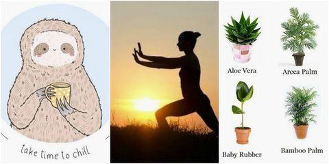 Pinterest 100 wellness trends 2018
