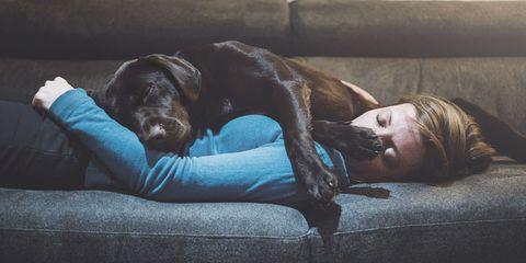 dog woman sleep