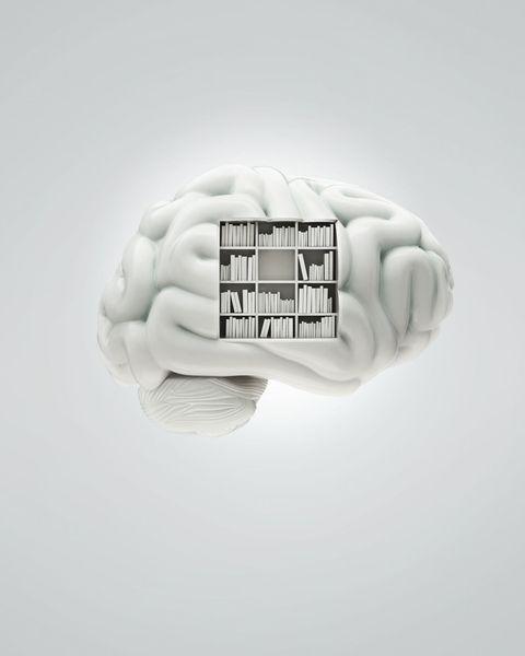 White bookcase in brain