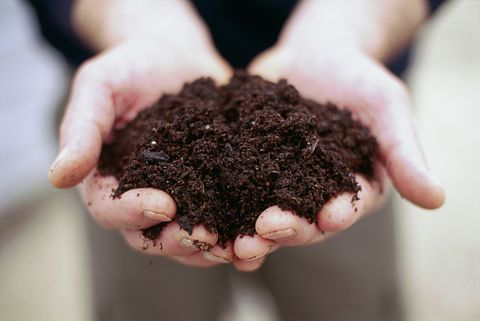 7 things you didn't know about composting