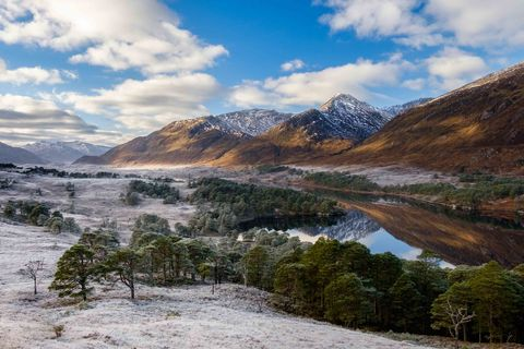 Paul Webster -  Wild Affric - Glen Affric