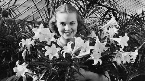 Petal, White, Leaf, Iris, Beauty, Greenhouse, Tooth, Floristry, Monochrome photography, Portrait photography,