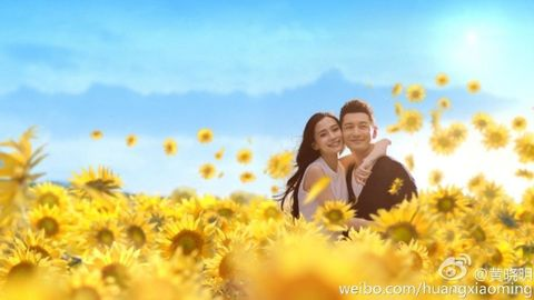 Yellow, Petal, Flower, Happy, People in nature, Facial expression, Summer, Interaction, Romance, Sunflower,