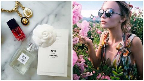 Eyewear, Glasses, Vision care, Petal, Flower, Sunglasses, Pink, Fashion accessory, Flowering plant, Beauty,
