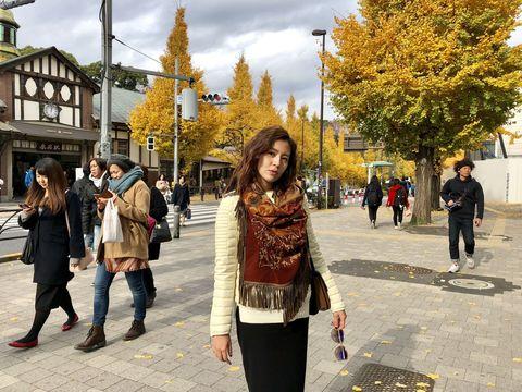 Photograph, People, Leaf, Yellow, Tree, Snapshot, Tourism, Autumn, Public space, Pedestrian,