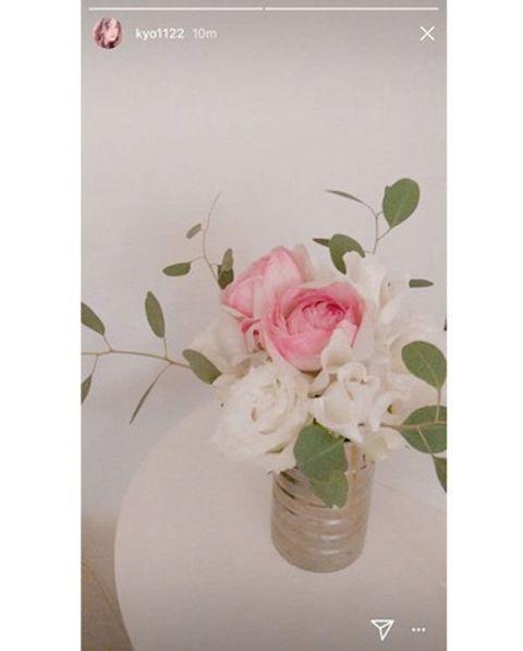 Flower, Pink, Rose, Plant, Rose family, Vase, Cut flowers, Petal, Garden roses, Flowerpot,
