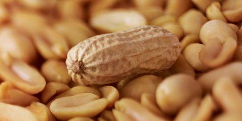 Peanuts - Peanut Allergy