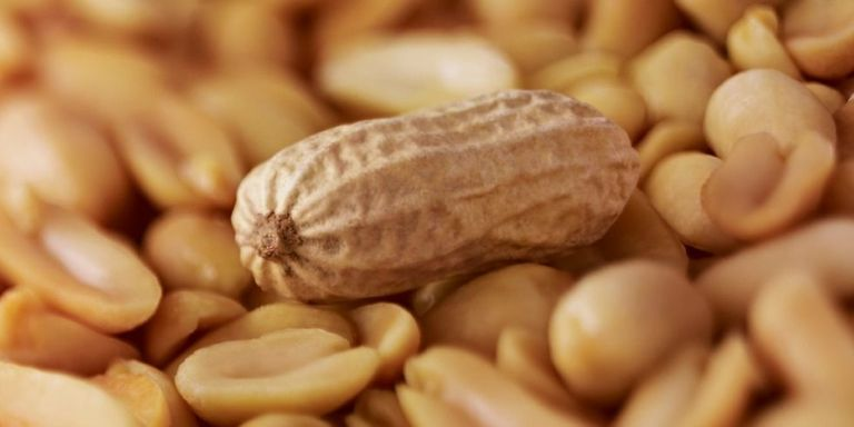 Restaurant owner convicted of manslaughter for serving a dish with peanuts peanut allergy forumfinder Image collections