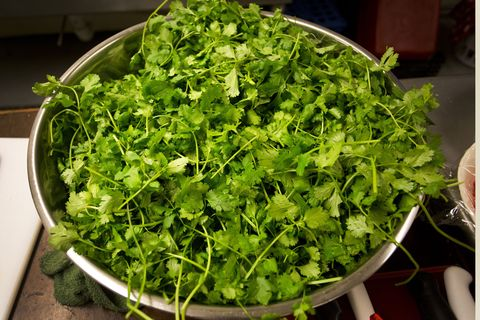 Leaf, Ingredient, Herb, Fines herbes, Annual plant, Leaf vegetable, Coriander, Garden cress, Parsley family, Produce,