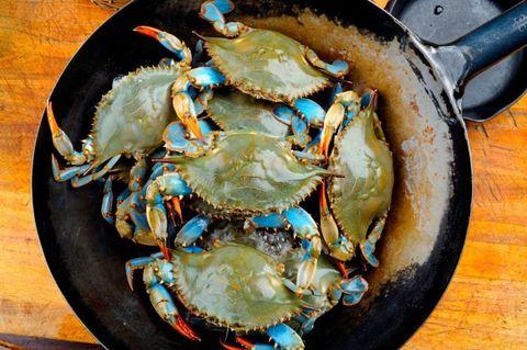 Food, Ingredient, Arthropod, Invertebrate, Crab, Seafood, Decapoda, Shellfish, Crab meat, Recipe,