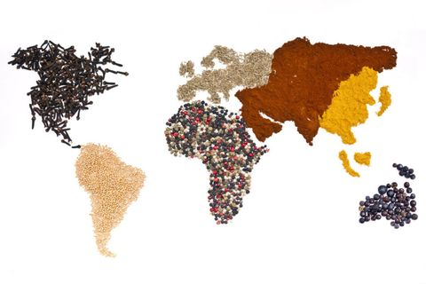 Brown, Colorfulness, World, Ingredient, Beige, Illustration, Graphics, Art paint, Spice, Drawing,