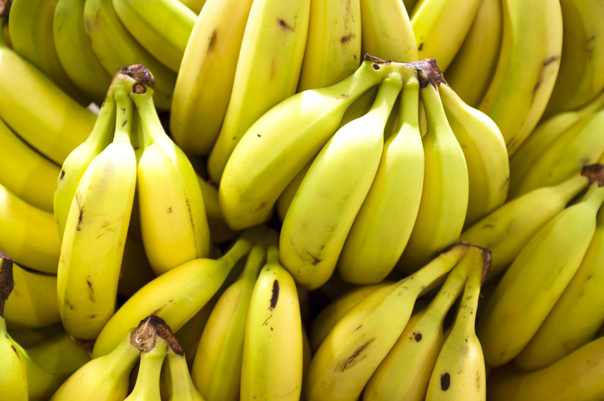 These Insane Bananas Taste Just Like Ice Cream