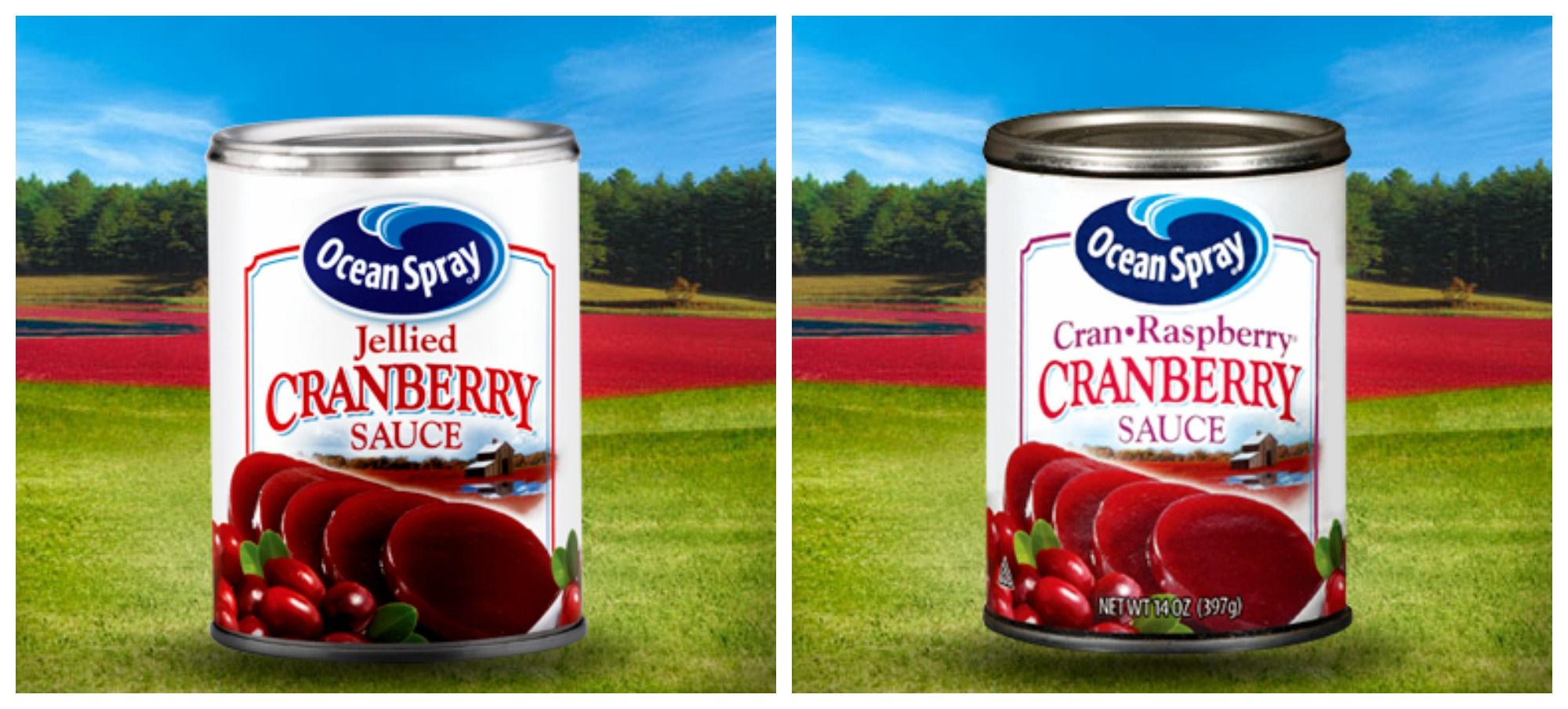 There S A Reason Why Cranberry Sauce Cans Are Upside Down Why Cranberry Sauce Cans Are Upside Down