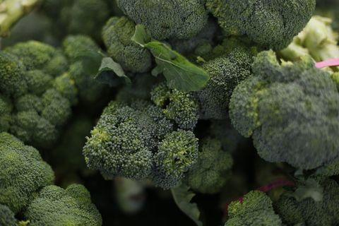 Broccoli, Cruciferous vegetables, Leaf vegetable, Flower, Plant, Vegetable, Organism, Broccoflower, Kale, Flowering plant,