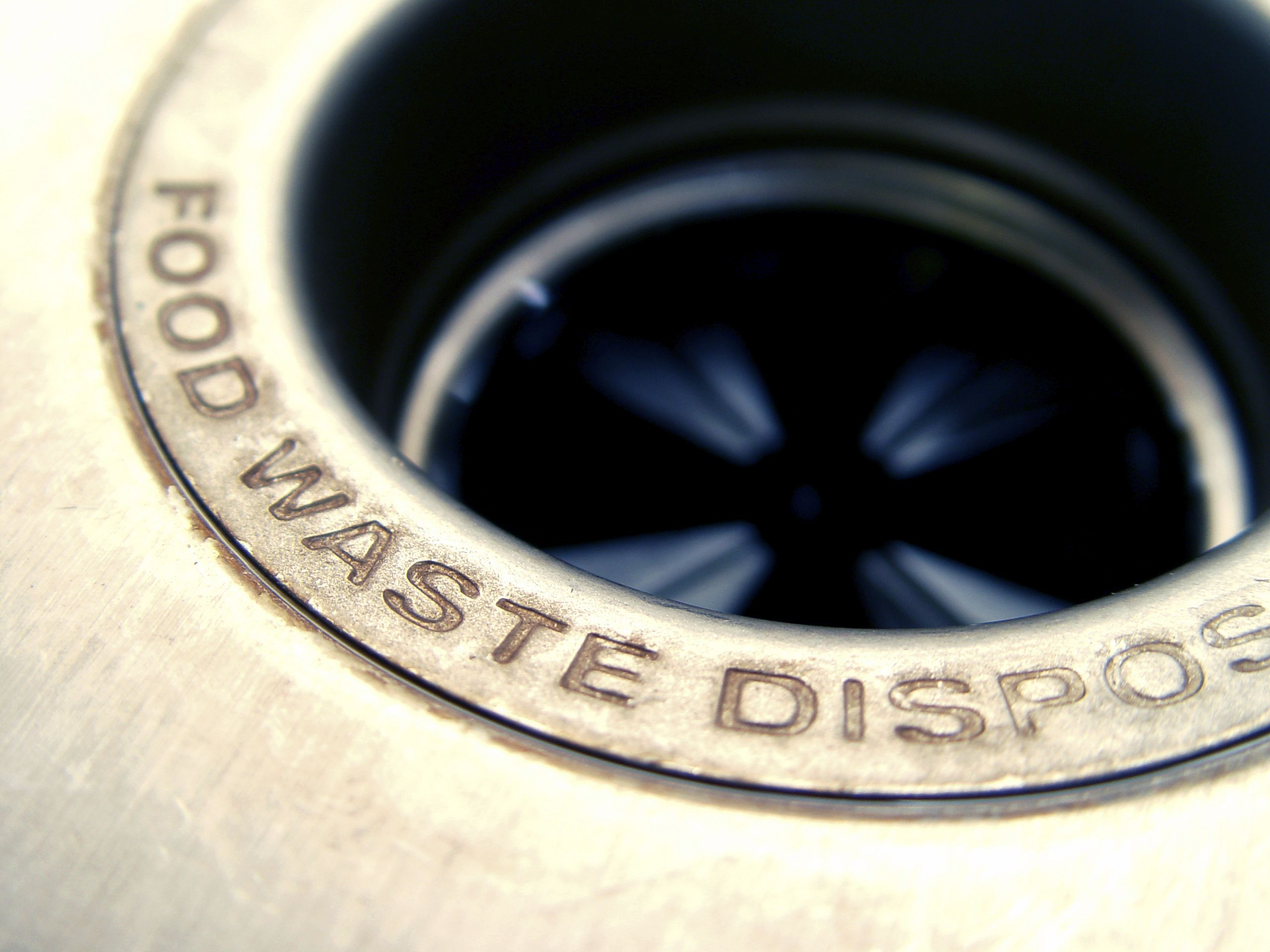 Things That You Should Never Put In The Garbage Disposal Food