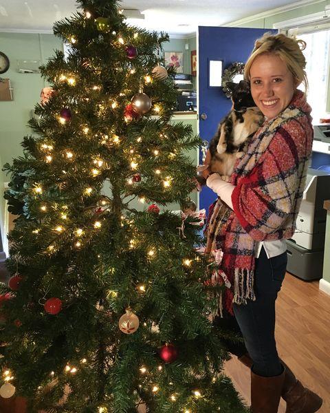 Event, Christmas decoration, Interior design, Christmas tree, Christmas ornament, Red, Interior design, Christmas eve, Holiday, Holiday ornament,