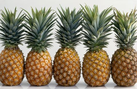 Pineapples Lined Up