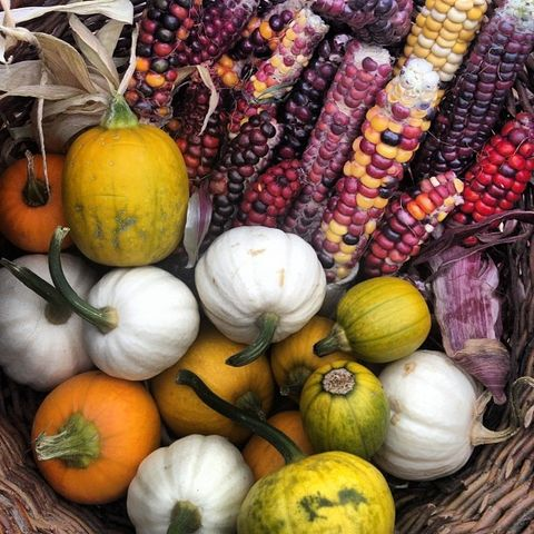 Natural foods, Winter squash, Vegetable, Local food, Whole food, Gourd, Superfood, Fruit, Pumpkin, Food,