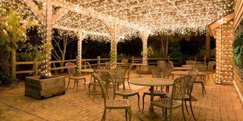 Twinkle Lights Backyard