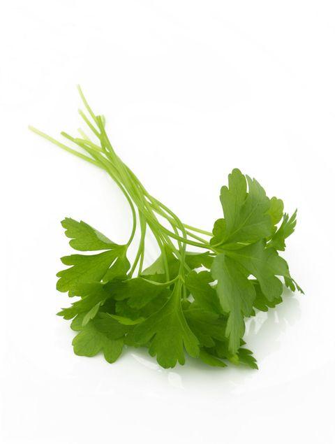 Leaf, Leaf vegetable, Ingredient, Vegetable, Herb, Produce, Whole food, Annual plant, Coriander, Parsley family,