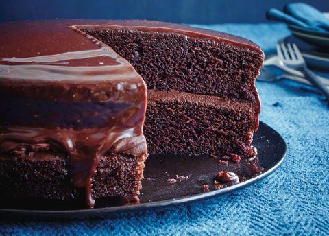Chocolate Fudge Cake Horizontal