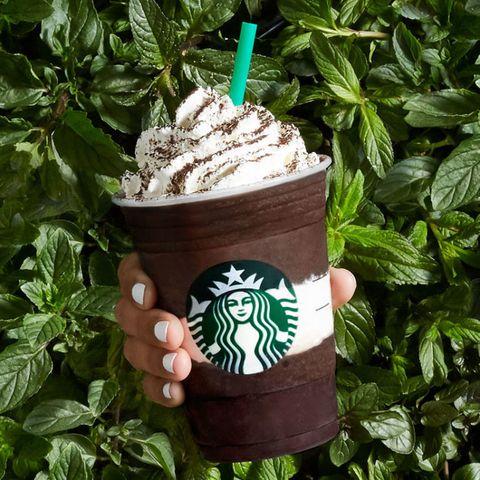 Starbucks Mint Mocha Frappuccino