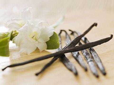 Flower, Plant, Vanilla, Cut flowers, Branch, Twig, Flowering plant, Artificial flower, Petal, Plant stem,