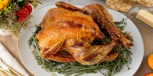 Christmas Turkey Recipes