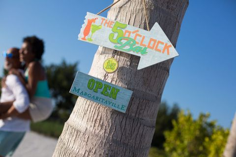 Tree, Woody plant, Sky, Banner, Adaptation, Plant, Recreation, Tourism, Signage,