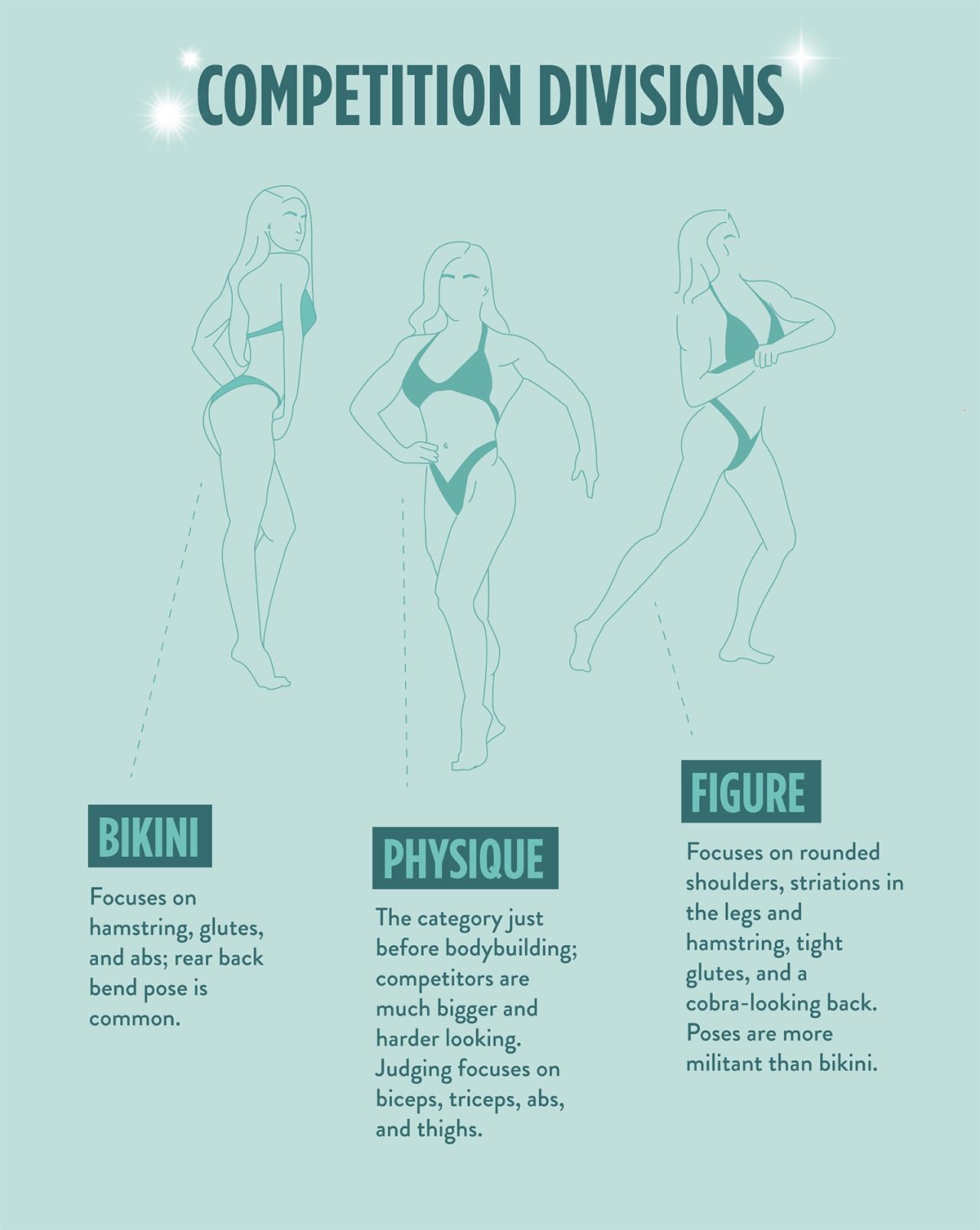 Plan sculpting diet female body