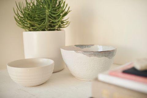 Flowerpot, Green, Houseplant, Cactus, Ceramic, Plant, Bowl, Room, Succulent plant, Porcelain,