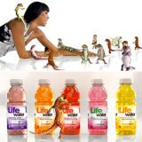 "<p><a href=""http://www.youtube.com/watch?v=anLqu77uTH0/"" target=""_blank"">SoBe Life Water's ""Thrillicious""</a> commercial in 2008 starred the beautiful</p>"